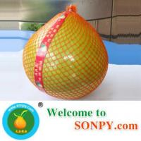 China Pomelo Manufactures