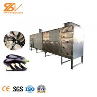 Tunnel Belt Industrial Hot Air Dryer Ginger Drying Machine Easy To Operate Manufactures