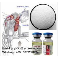 China Bodybuilding Injectable Anabolic Steroids Steroid Powder Source 17- MethylTestosterone on sale