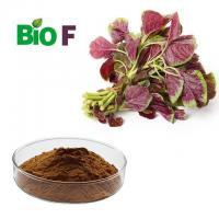 High Fiber Vegetable Extract Powder / Natural Pigment Powder Solvent Extraction Manufactures