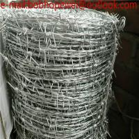 Galvanized safety barbed wire/galvanized decorative barbed wire fencing/barbed wire/low price barbed wire roll fence Manufactures