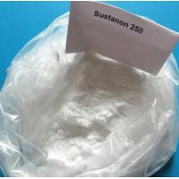 Injectable Muscle Building Steroids Testosterone Sustanon 250 White Powder For Muscle Mass Manufactures