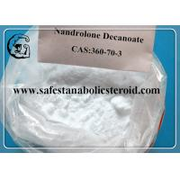 Professional Muscle Building Steroids Raw Testosterone Powder Nandrolone Decanoate Steroids Manufactures