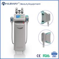 cryolipolysis slimming machine 3 handles cryotherapy / freeze fat system weight loss Manufactures