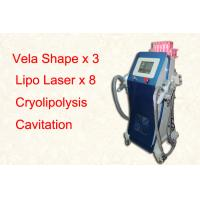 Vertical Lipo Cryolipolysis Freeze Fat Machine / Cellulite Removal Equipment Manufactures
