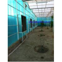 China Well-Known Trademark transparent soundproof sheet for sidewalks Manufactures