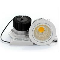 Epistar high power recessed LED downlight 40W meanwell driver available Manufactures