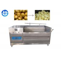 Industrial Ginger Washing And Peeling Machines For Vegetable Cleaning Manufactures