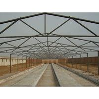 Noiseproof Insulation Chicken Shed Framing Systems Light Steel Frame Sandwich Panel Manufactures