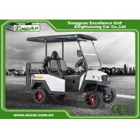 2 - Seater Mini Electric Hunting Buggy , Golf Cart Type Vehicles Ce Approved Manufactures