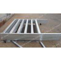 Galvanized / Powder Coated / Green Painted Cattle Yard Panels Corral Panel Manufactures