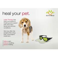 Dimed Laser Treatment For Veterinary Pain Management , 810 / 910 / 980nm Manufactures