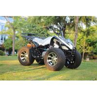 13.9HP 250CC Youth Racing ATV Chain Drive ATV With Front Drum Brake Manufactures