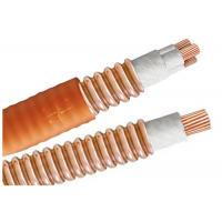 Light Load Multicore High Temperature Cable BTTW 500V BS IEC Certification Manufactures