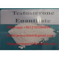 Testosterone Enanthate Raw Steroid Powder Pharmaceutical Intermediates Purity 99.5% Manufactures