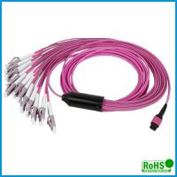 Customized Multi Color MPO To MPO Cable , 24 Fibers Multimode Patch Cord Manufactures