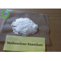 White Raw Hormone Powders Primobolan depot Methenolone Enanthate for steroids Manufactures