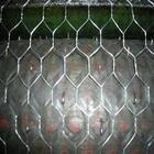 China Stainless Steel Hexagonal Wire Netting/Poultry Netting on sale