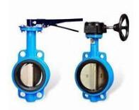 Marine Centric Manual Operated Wafer Butterfly Valve Manufactures
