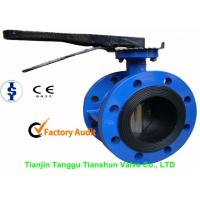 ANSI Large Double Flanged Butterfly Valve Cast Iron With Electric / Manual Manufactures