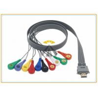 China 10 Leads Holter Ecg Cables And Leadwires 0.9 Meter Length Biox Compatible on sale