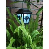 China 15W Low Voltage Outdoor Lighting Solar Light Garden 3.5m Pole With 50W Solar Module on sale