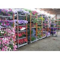 Light duty movable flower trolley for greenhouse Manufactures