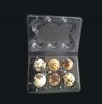 Disposable plastic quail egg tray 6 holes quail egg tray plastic egg tray for quail eggs 6 slots Manufactures