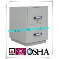 Fire Resistant Filing Cabinets , 2 Drawer Fireproof File Cabinets For Documents Manufactures