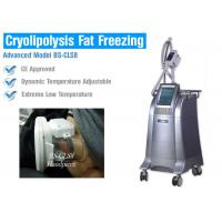 Non Surgical Liposuction Cryolipolysis Body Slimming Machine , Vacuum Weight Loss Machine Manufactures