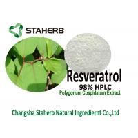 Resveratrol 98% HPLC Polygonum Cuspidatum Root Extract Powder For Life Extension Manufactures