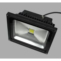 30W Color Changing Outdoor LED Flood Light black housing black LED Flood light 30W Manufactures