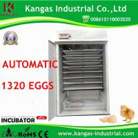 More Than 98% Hatching Rate Egg Incubator Thermostat/Automatic Poultry Chicken (KP-12) Manufactures