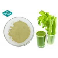 Anti - Inflammatory Dried Celery Powder / Super Green Powder For Weight Loss Manufactures