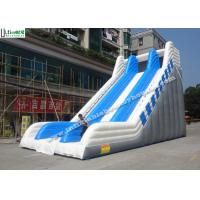 Giant Commercial Inflatable Slides