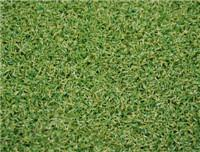 China Leisure Grass WF-M4-1 wholesale