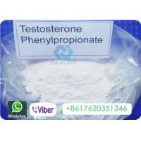 China Phenylpropionate Testosterone Anabolic Steroid CAS 1255-49-8 High Purity on sale