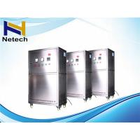 220V Water Treatment Ozone Generator Machine For Beverage Industry 4ppm Manufactures