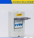 Plastic Electrical Weatherproof Distribution Box Rainproof IP65 4 6 9 12 18 24 36 Modules MCB Manufactures