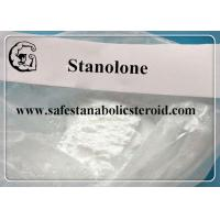 Stanolone / Androstanolone Raw Steroid Powders for muscle mass and strength CAS 521-18-6 Manufactures