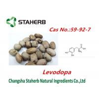 Concentrated plant Mucuna pruriens extract Levodopa powder cas no.59-92-7 Manufactures