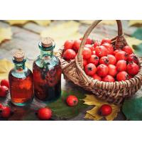 Freeze Dried Heart Care Supplements For Cardiovascular Health Hawthorn Berry Extract Manufactures