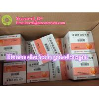 Natural Healthy Human Peptides Human Chorionic Gonadotropin Pregnancy Test Manufactures