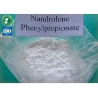 Tightly packed Nandrolone phenylpropionatewith safe Delivery and 99% Purity white powders CAS 62-90-8 Manufactures