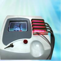 650nm Diode Lipo Laser Slimming Machine For Body Shaping , fat reduction and cellulite Manufactures