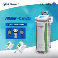 Cryotherapy Fat freezing Cryolipolysis Slimming Machine For cellulite reduction Manufactures
