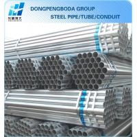 Hot Dipped Galvanized Pipe plain end China supplier made in China Manufactures
