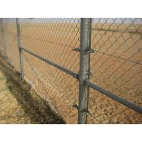 PVC Coated Chain Link Fence For Football Field Fence Manufactures