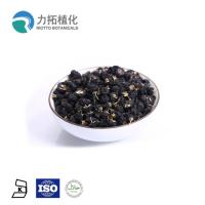 China 100% Pure Nature Freeze Dried  Powder Organic Black Goji Extracts Improve Memory on sale