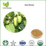 Noni Extract,noni powder,noni fruit extract,noni p.e,noni fruit powder Manufactures